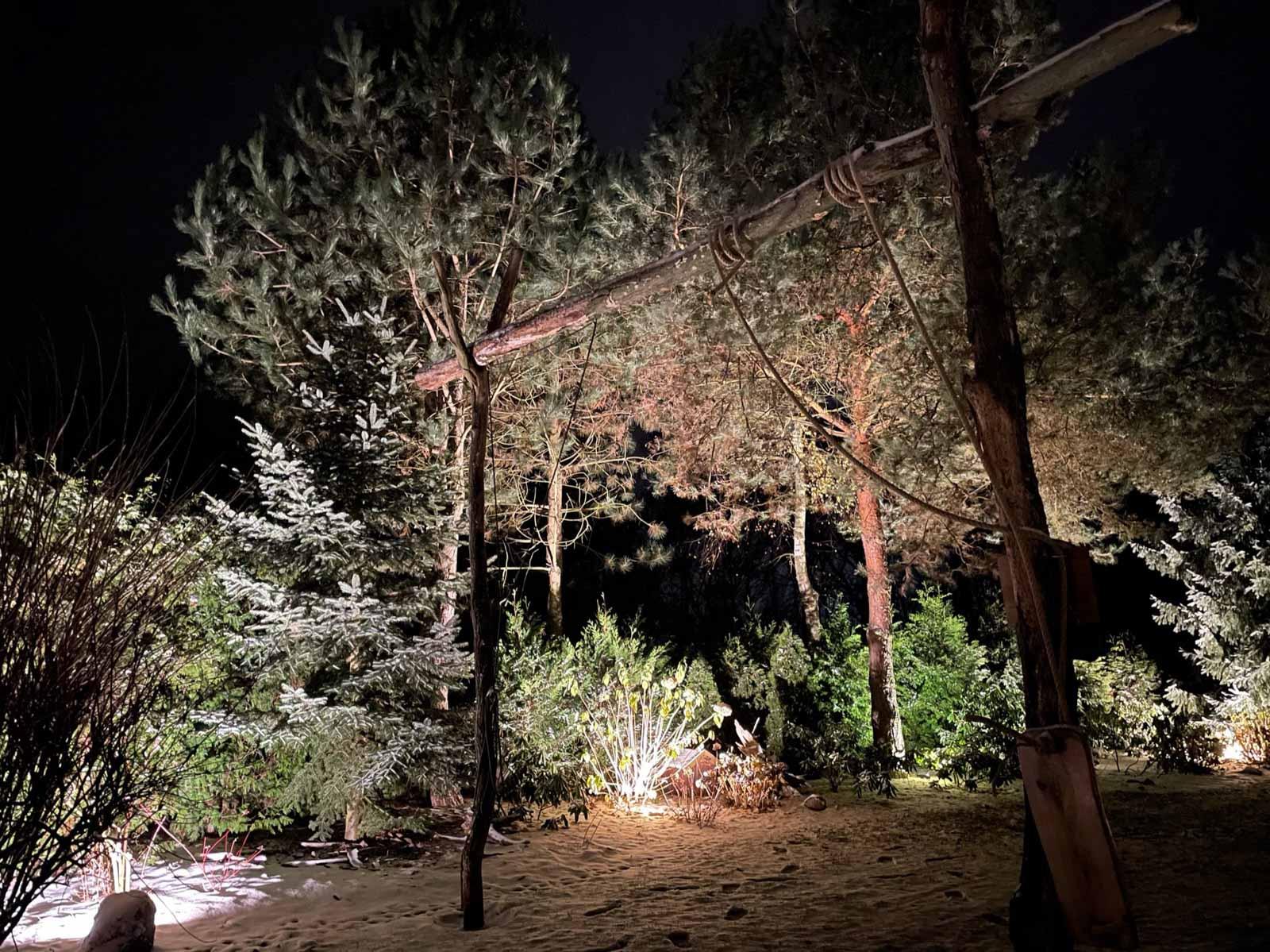podświetlenie drzew i elewacji